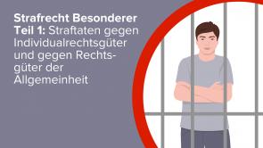 Strafrecht Besonderer Teil 1: Straftaten gegen Individualrechtsgüter und gegen Rechtsgüter der Allgemeinheit
