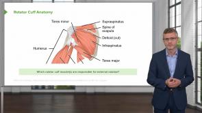 Rheumatology (release in progress)
