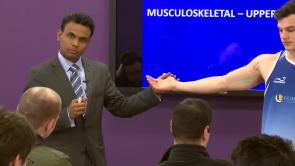 Musculoskeletal - Upper Limb