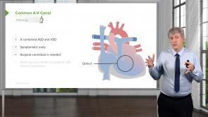 Pediatric Cardiology