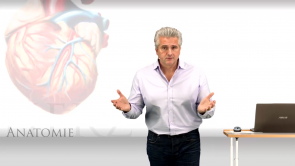 Anatomie und Physiologie (Uni-Med-HP Teil 1)