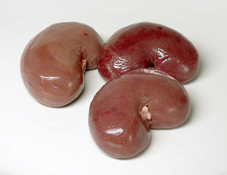 Nierentransplantation_gesund_780px-Lammnieren.jpg
