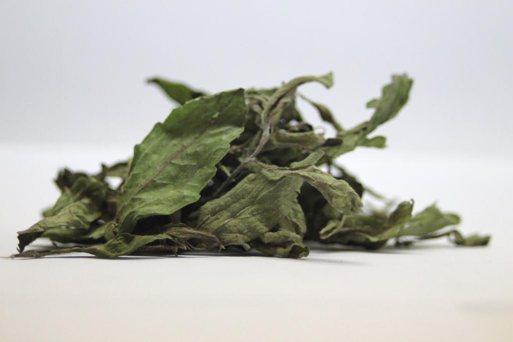 Sodbrennen_Stevia_rebaudiana_leaves_dry