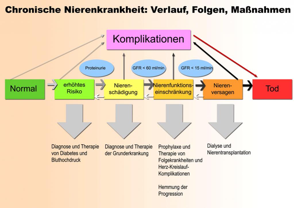 Niereninsuffizienz_Nierenversagen_Chronische-Nierenkrankheit