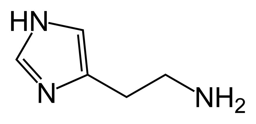 Histamin1_Histamine.png