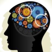Wissensmanagement bei Lecturio