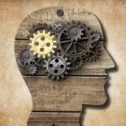 Wissensmanagement im Unternehmen bei Lecturio