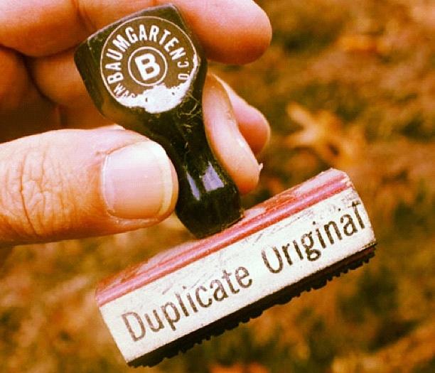 Duplicate - Plagiat