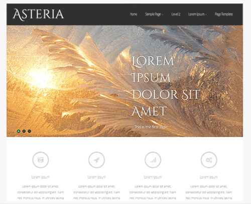Theme Asteria Lite