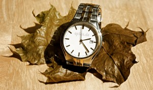 "Bild: ""Slow Time in Wrist Watch on Dry Leaf"" von epSos .de. Lizenz: CC BY 2.0"