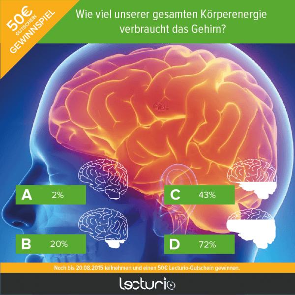 Gehirn Energie