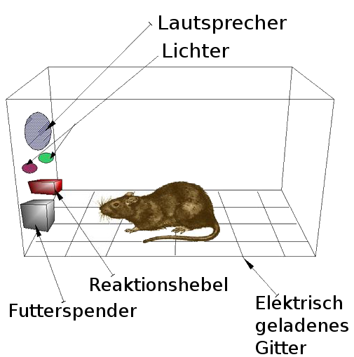 Skizze Möglicher Versuchsaufbau für eine Skinnerbox