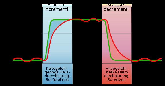 Fieberkurve