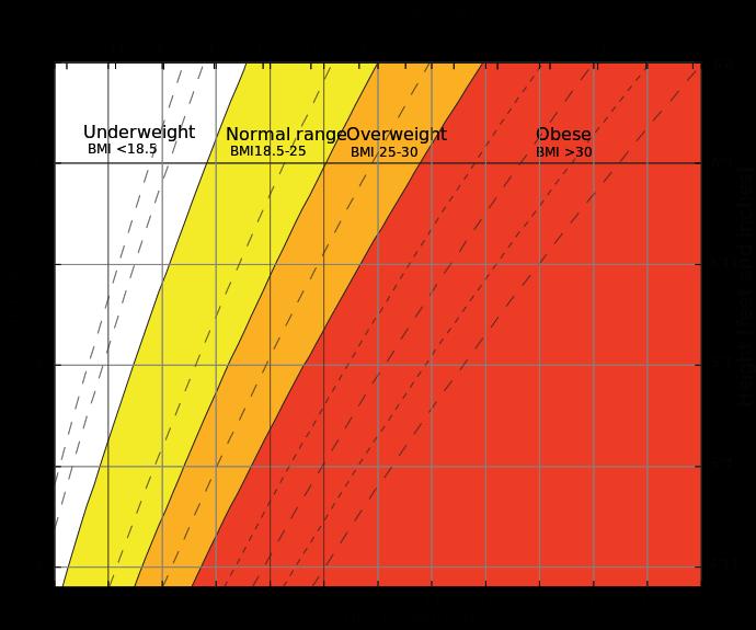 Graph BMI
