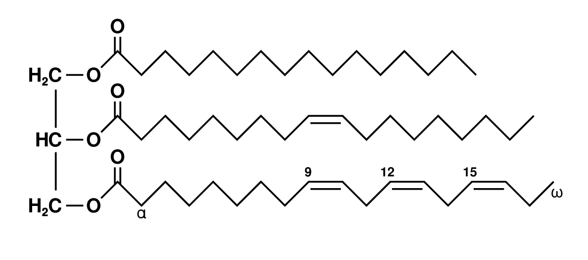 triglyceridmolekül