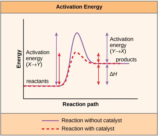 Aktivierungsenergie