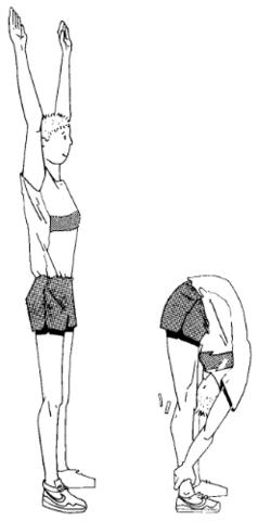 Inklination der Wirbelsäule als Skizze