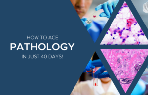 How to Really Ace Pathology | The 40-Day Study Schedule by
