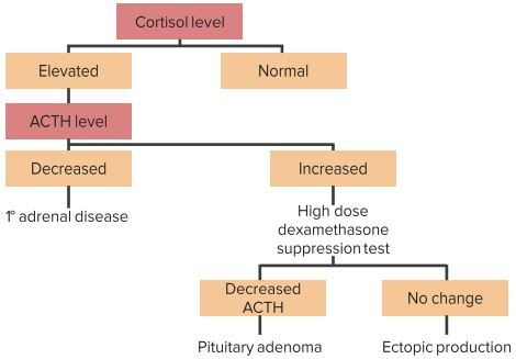 Stepwise-Approach-to-diagnose-cushing´s-syndrome