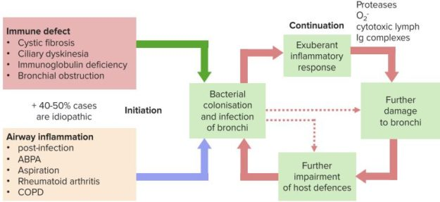 Causes-and-pathogenesis-of-Bronchiectasis