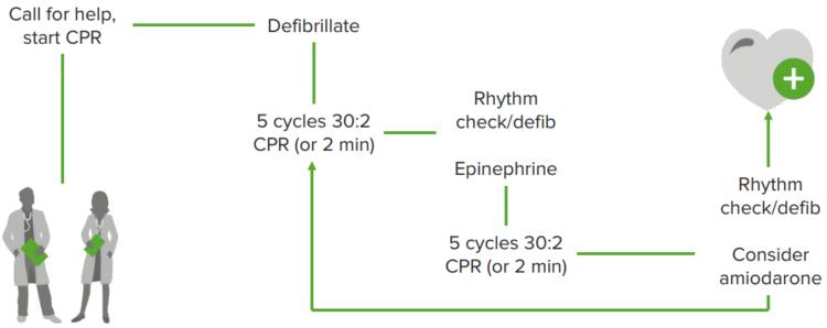 ventricular-fibrillation-tachycardia-algorithm
