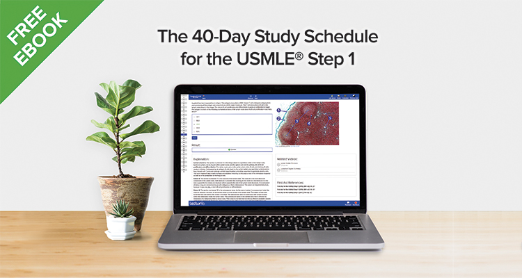 40 day study schedule for free