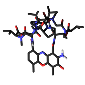 "Image: ""Stick model of the Actinomycin D."" by Гонсо. Licence: CC BY-SA 3.0"
