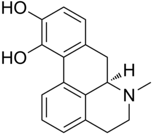 Structural formula of apomorphine