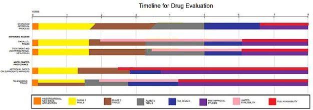 Drug Evaluation Process
