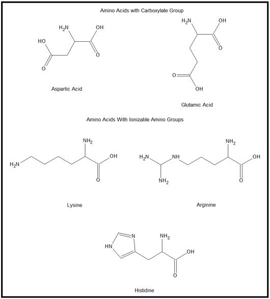Ionic Amino Acids