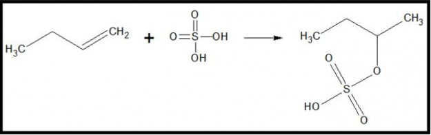 Addition of sulfuric acid to 1-butene