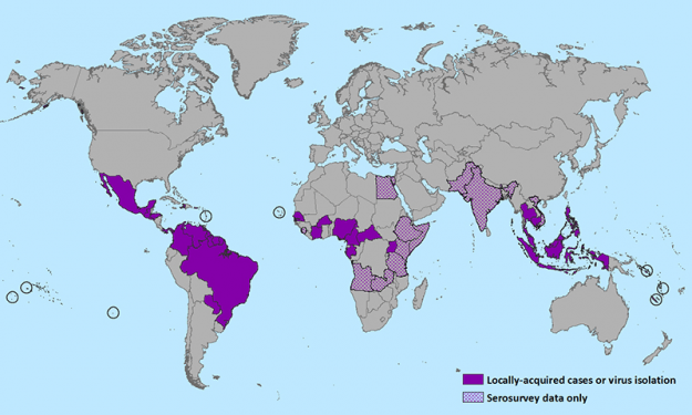 Countries that have past or current evidence of Zika virus transmission