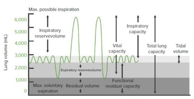 Functional Residual Capacity
