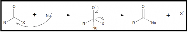Mechanism of Nucleophilic-Acyl-Substitution-Reactions