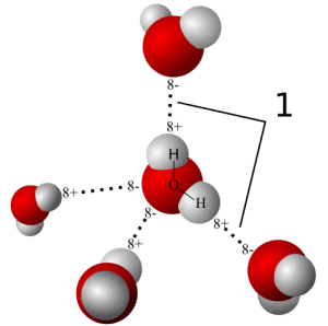 Model of hydrogen bonds in water