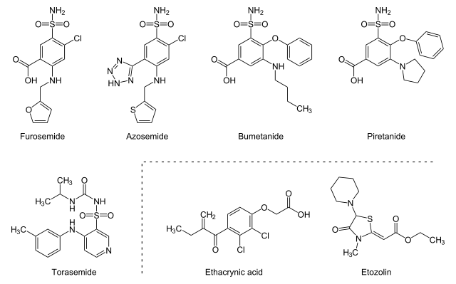 Structure of the loop diuretics Furosemide, Azosemide, Bumetanide, Piretanide, Torasemide, Ethacrynic acid and Etozolin