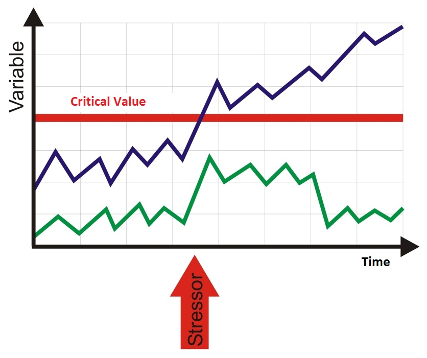Vulnerabilitaets-stress-modell