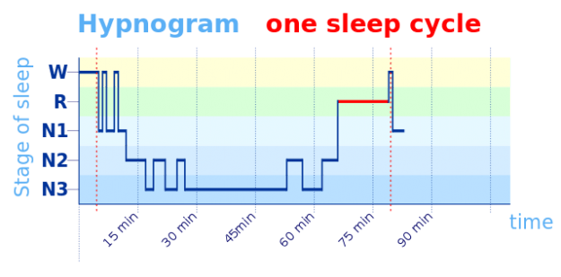 hypnogram-one-sleep-circle