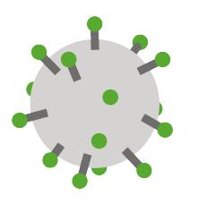 live-vaccines