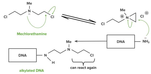 mechlorethamine