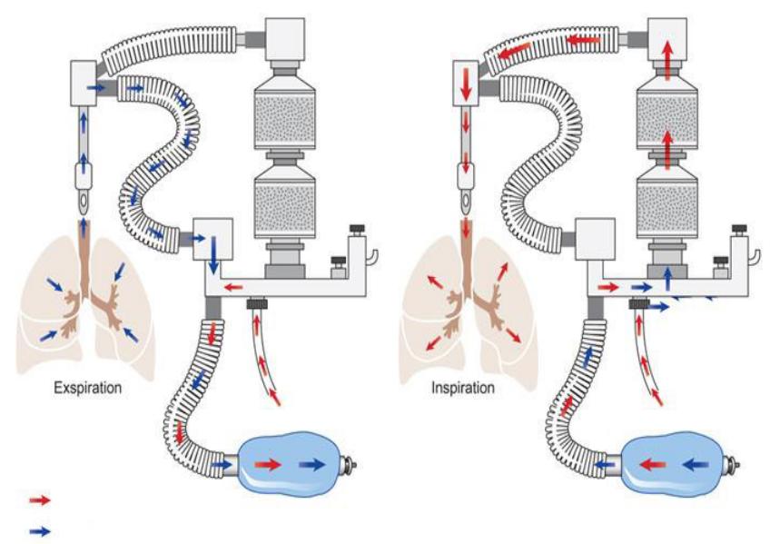 rebreathing-system