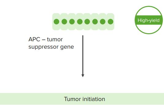 tumor initiation
