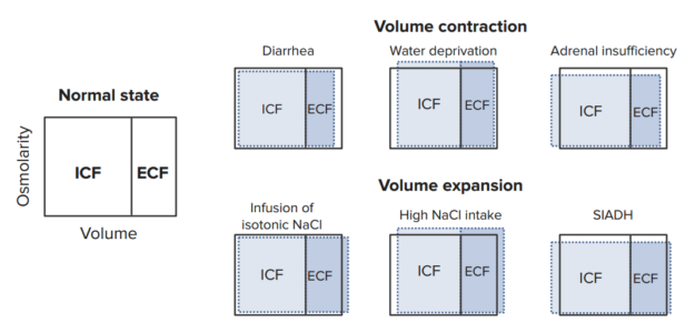 volume-contraction